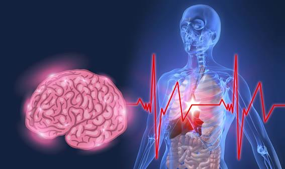 psiconeuroimmunologia, medicina ortomolecular